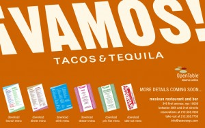 Vamos Restaurant & Tequila-New York