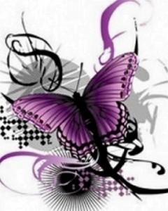 Butterfly Spa LLC-Denver